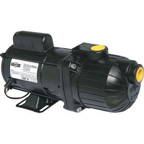 Bomba-Auto-aspirante-1-2CV-Dancor-AP-2R-Bivolt